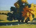 Susan Matteson / Sheep and Shadows 11 x 14, oil $925