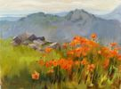 Alana Ruby / Mountain Poppies 9 x 12, oil $500