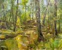 Mary Ann Davis / In the Woods 16 x 20, oil $1600
