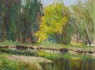 Marcie Cohen / Spring at the River 9 x 12, pastel $1050