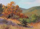 Chuck Mauldin / Utopia Colors 9 x 12, oil $800