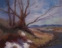 Sheila Marie / Aspen Grove Cottonwood 11 x 14, oil $800