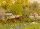 SOLD  Texas Hill Country Spring